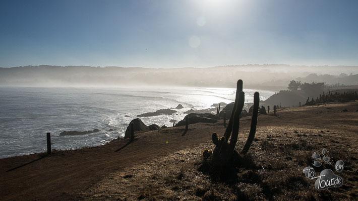 Pichilemu - Punta de Lobos