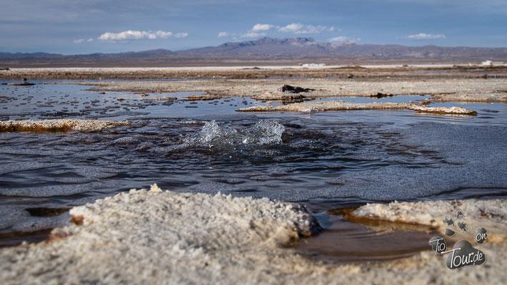 Salar de Uyuni - Ojos - Wasserlöcher