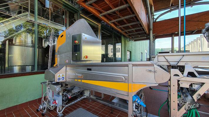 Banfi, Produktions- und Lagerstätten, Scanner für die Trauben