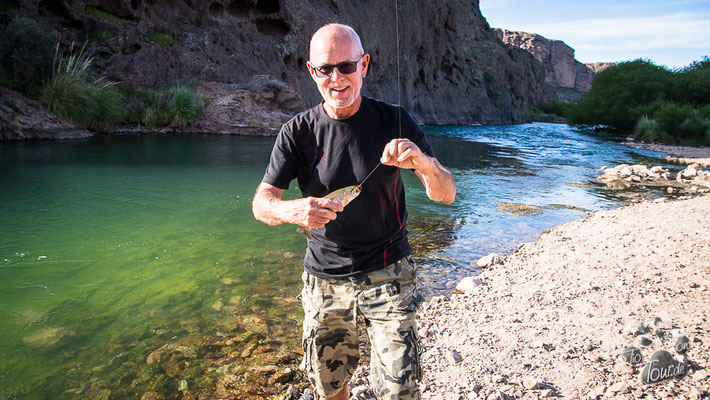 Fliegenfischen am Rio Chubut