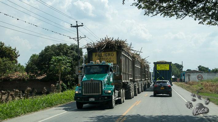 Zuckerrohr-Transporter