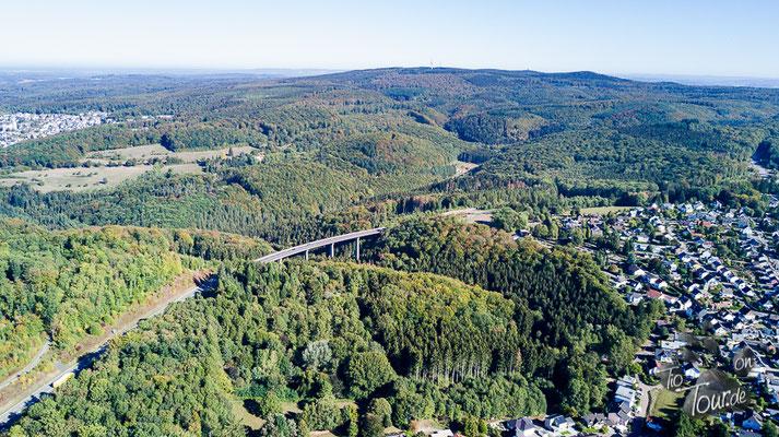 Westerwälder Herbstwald
