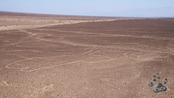 Nazca-Linien - Hände