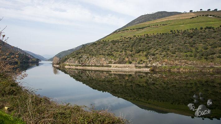 Douro-Tal