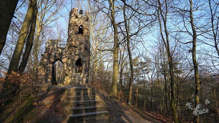 Burg von Bad Schandau