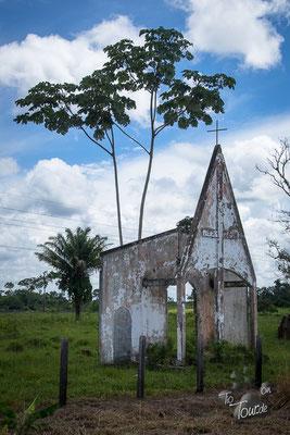 Richtung Rio Branco