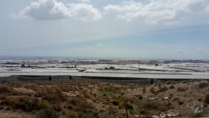 Cabo de Gata - Gewächshäuser soweit das Auge reicht