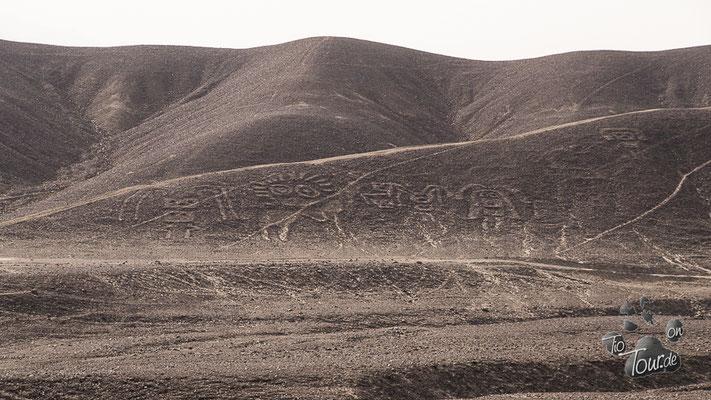 Nazca-Linien - königliche Familie