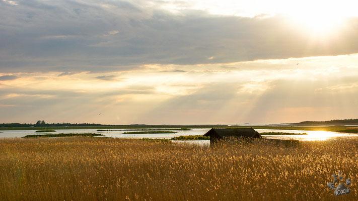 Varberg Naturreservat