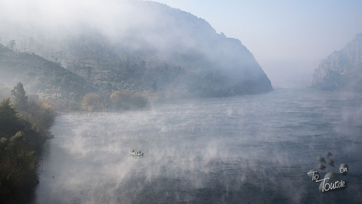 Vilha Velha de Rodão - selbst auf dem Tejo wabert der Nebel