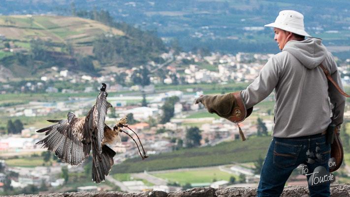 Otavalo Parque Condor