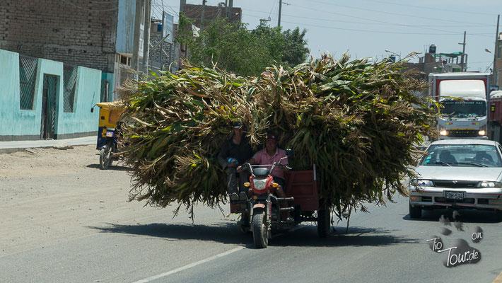 Moped - Ladung - Fahrer - und Beifahrer !!