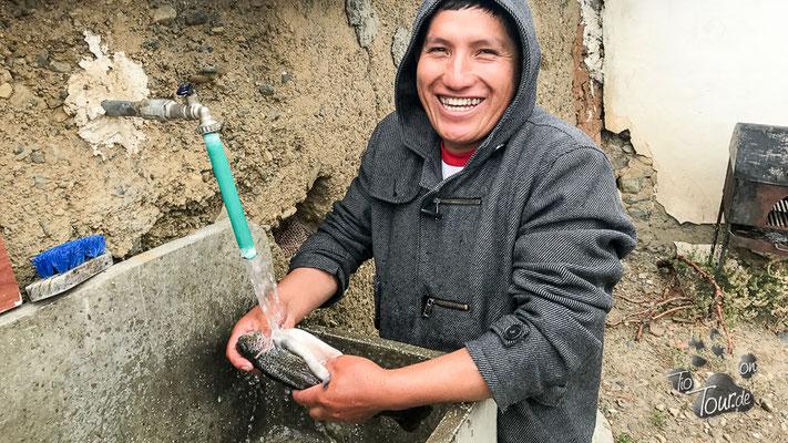Frisch gefangene Forellen - ausgenommen und gewaschen