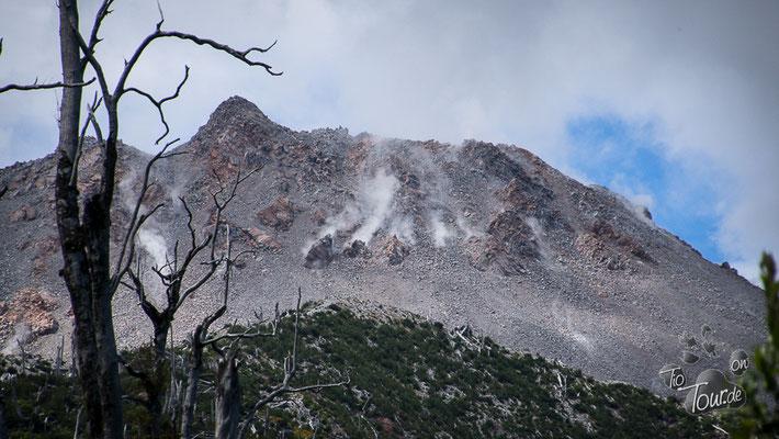 Parque Pumalin Vulkan Chaitén