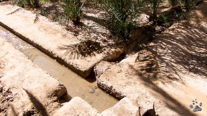 Bewässerungssystem in der Oase