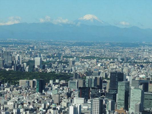 9時頃の富士山、その後この雲が富士山に移動して見えなくなった!(PLA局提供)
