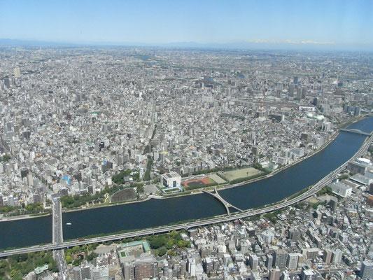 歩道専用橋「桜橋」
