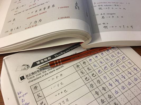 Chinese homework