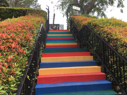 colourful stairs