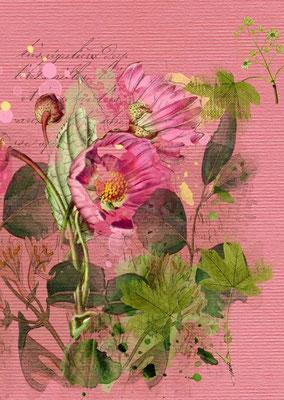 Postkarte von Aquarell mit Blumenmotiv-4, Zu erwerben auf der Aachener Kunstroute 2015 am 25. 26. und 27. September in der Galerie Frutti dell'Arte.