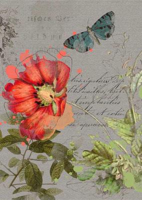 Postkarte von Aquarell mit Blumenmotiv-5, Zu erwerben auf der Aachener Kunstroute 2015 am 25. 26. und 27. September in der Galerie Frutti dell'Arte.