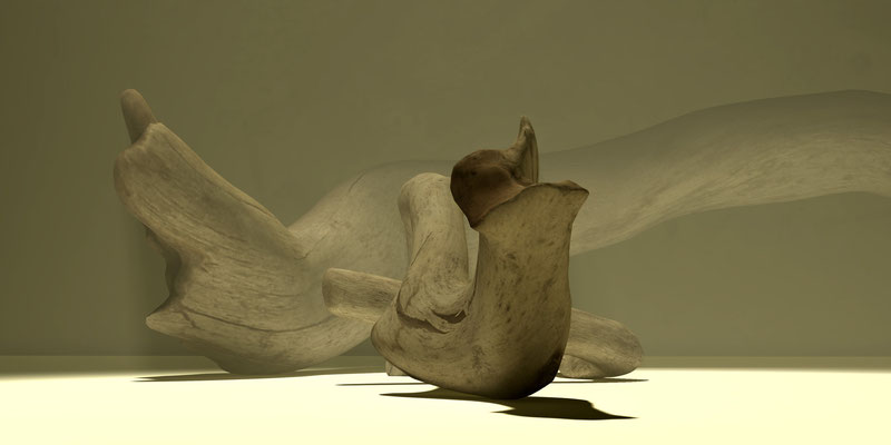 Driftwood 4, digitl art 3d, Marcus Löhrer auf der Aachener Kunstroute 2015