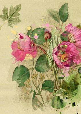 Postkarte von Aquarell mit Blumenmotiv-1. Zu erwerben auf der Aachener Kunstroute 2015 am 25. 26. und 27. September in der Galerie Frutti dell'Arte.