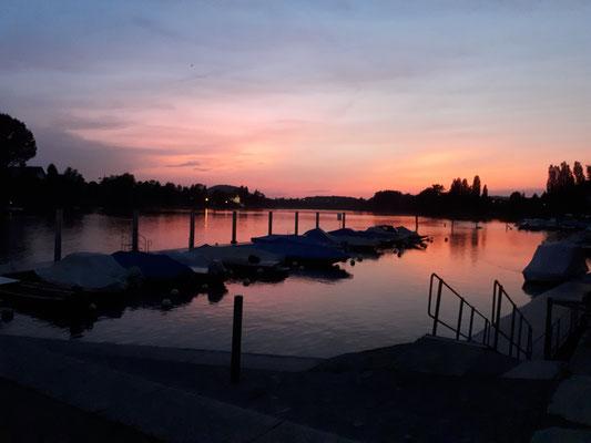 Sonnenuntergang am Rhein (Schiffanlegestelle Stein a/Rhein)