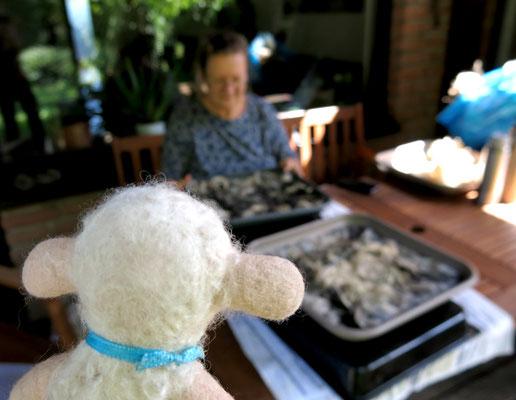 Mathilda, die Wollexpertin, wirft einen kritischen Blick auf das Filzwerk.