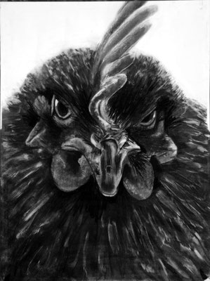 2015 - Battery Chicken - Charcoal on paper - SOLD