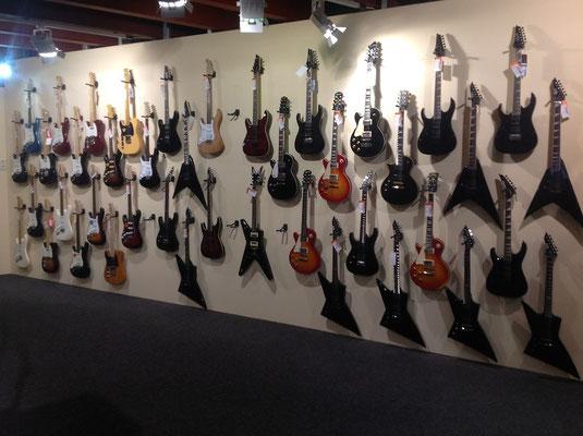 Große Auswahl Gitarren