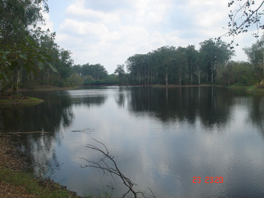 See auf dem Gelände der Plantage.