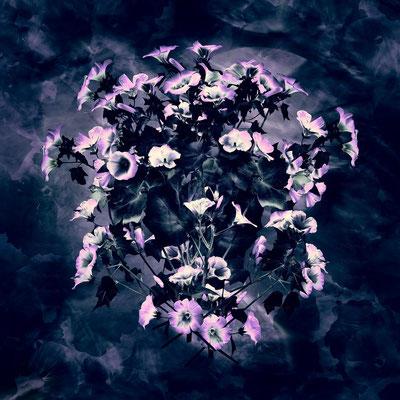 Magic Flowers 9 | 1:1