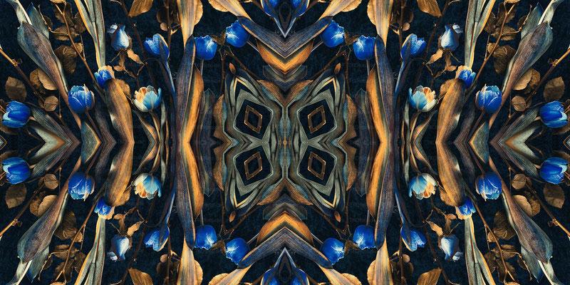 Kaleidoscope 11 | 2:1