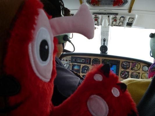 Flugzeug von ihnen,Pilot,Wampel im Flieger, Fliegen mit Kindern,Spielzeug,Wampel.net,shoppen