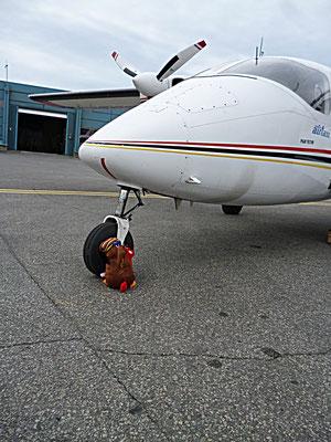 Flugzeug,Fliegen mit Kindern,Urlaub,Reisen,