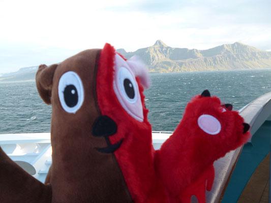 Wampel,Meer,Natur,Urlaub mit Kindern,Bio - Kuscheltier,Wampel.net,Bester Kindergarten,Bestes Kinderbuch 2016