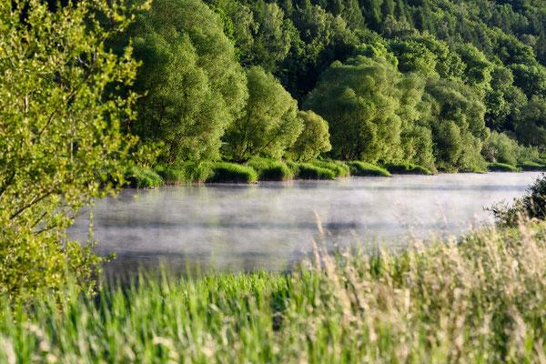 Morgennebel auf der Weser