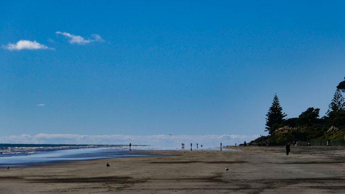 Raumati Beach