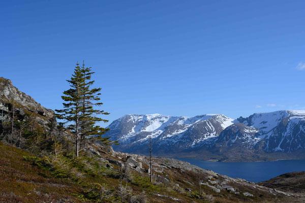 Wanderung auf Bjarkøya