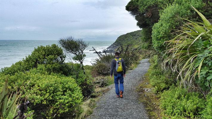 Die ersten Meter des Te Araroa