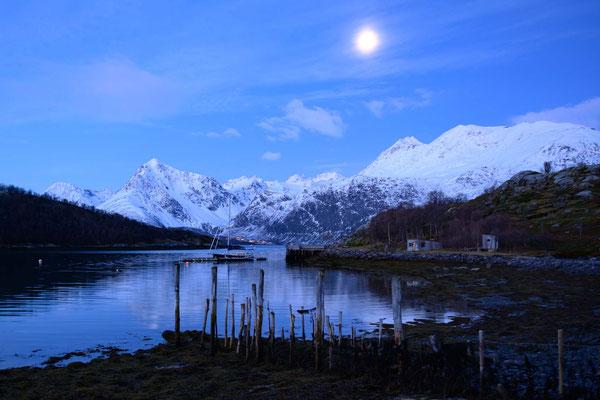 Ein sicherer Hafen auf Arøya