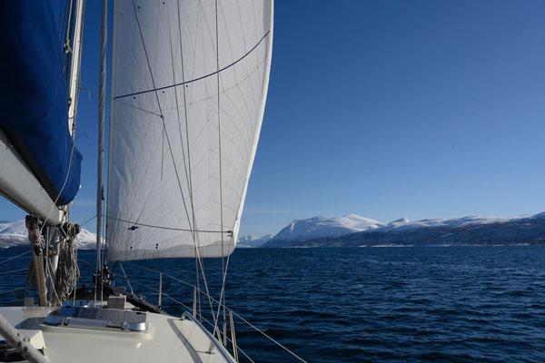 endlich wieder segeln