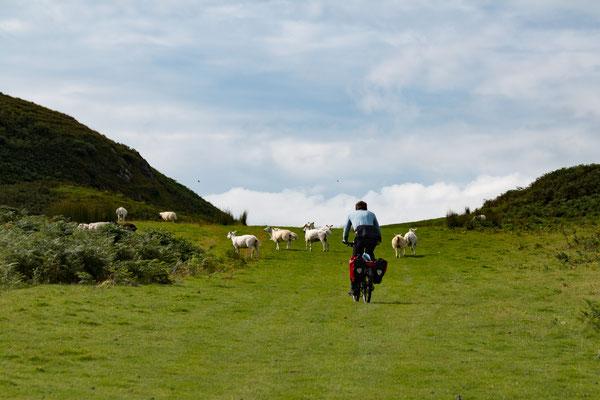Radtour auf der Insel Kerrera