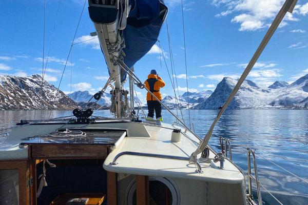 super Wetter und super Kulisse im Sandlandsfjorden
