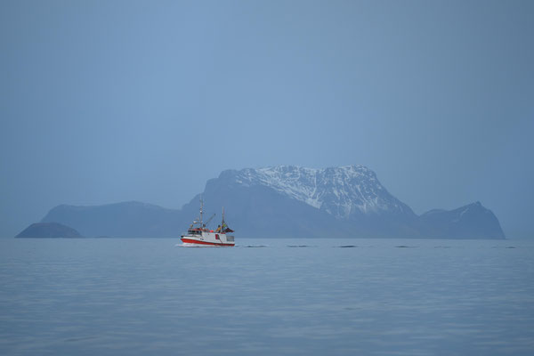 Fischerboot auf der Suche nach dem Hering