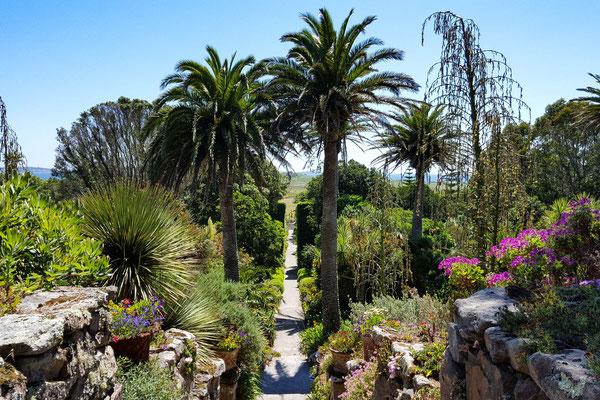 Garten von Tresco