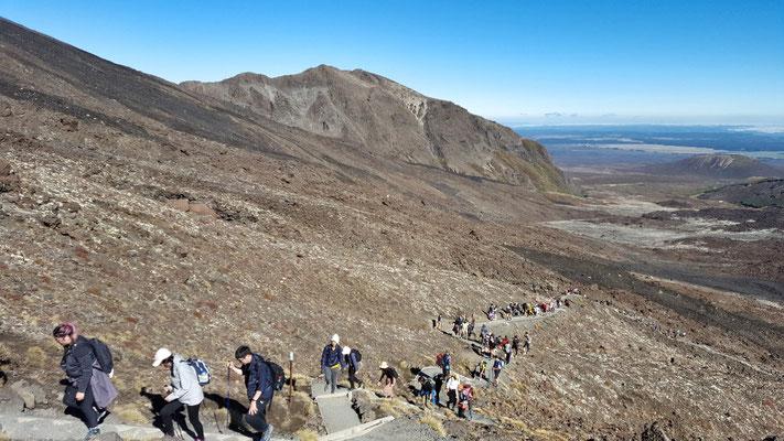 Stau auf dem Tongariro Crossing