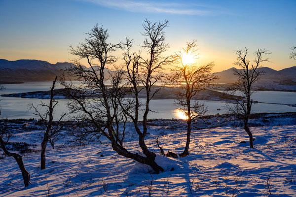 Sonne nach der Polarnacht