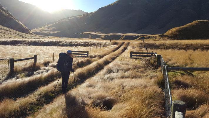 Motatapu Track am Te Araroa